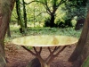 table-in-woodsB